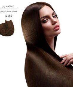 رنگ مو والانسی سری نسکافه ای (شامل 4 رنگ )